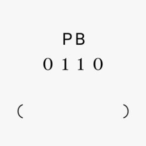 PB 0110